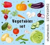 fresh vegetables set. vector... | Shutterstock .eps vector #1372410452