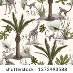 forest  jungle and animal... | Shutterstock . vector #1372493588