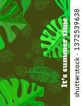 leaves of tropical plants....   Shutterstock .eps vector #1372539638