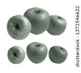 set of engraving apples...   Shutterstock .eps vector #1372546622