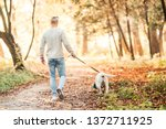 Stock photo man walking with dog labrador in the park 1372711925
