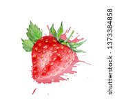 watercolor red strawberry with...   Shutterstock . vector #1373384858