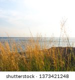 beautiful tropical seascape... | Shutterstock . vector #1373421248