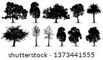 tree silhouette isolated on... | Shutterstock .eps vector #1373441555