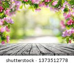 spring flowers background  pink ... | Shutterstock . vector #1373512778