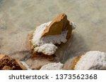 ancient salt exploitation of...   Shutterstock . vector #1373562368
