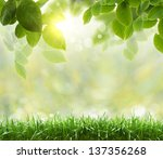 abstract toon background for... | Shutterstock . vector #137356268