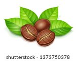 coffee grain with green leaves. ... | Shutterstock .eps vector #1373750378
