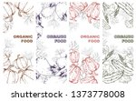 organic vegetables. natural... | Shutterstock .eps vector #1373778008
