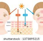 infographic illustration of... | Shutterstock .eps vector #1373895215