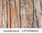 wood texture background surface ... | Shutterstock . vector #1373946032