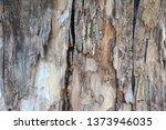 wood texture background surface ... | Shutterstock . vector #1373946035