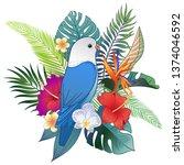 beautiful tropical exotic... | Shutterstock .eps vector #1374046592