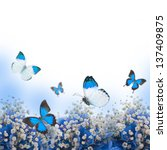 Stock photo flowers in a bouquet blue hydrangeas and butterfly 137409875