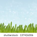 summer background from fresh... | Shutterstock . vector #137426306