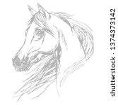 hend drawing arabian horse head.... | Shutterstock .eps vector #1374373142