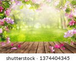 spring flowers background  pink ... | Shutterstock . vector #1374404345