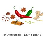 composition of spices and herbs ...   Shutterstock .eps vector #1374518648