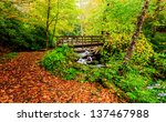 The great smokey mountains national park, bridge with waterfall , hiking trail falls colors