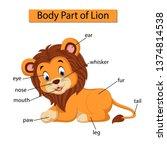 diagram showing body part of... | Shutterstock .eps vector #1374814538