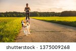 Stock photo girl skating with dog outdoors in nature on a road to forest sunny day countryside sunset 1375009268