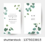 silver dollar eucalyptus... | Shutterstock .eps vector #1375023815