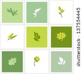 leaf. set of design elements | Shutterstock .eps vector #137554445