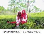 stlhet  bangladesh  23 mar 2019 ... | Shutterstock . vector #1375897478