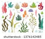 seaweeds. sea underwater plants ... | Shutterstock .eps vector #1376142485
