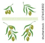 illustration of olive branches... | Shutterstock .eps vector #1376418302