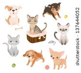 set of cute little puppies and... | Shutterstock .eps vector #137644052
