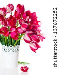 bouquet of bright pink tulips... | Shutterstock . vector #137672252