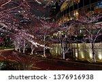 beautiful pink sakura cherry... | Shutterstock . vector #1376916938