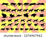 Stock vector silhouettes of animal movement in frames step by step for a cheetah horse eagle dog hare or 1376967962