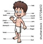 vector illustration of...   Shutterstock .eps vector #137728652