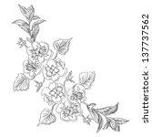 monochrom branch flower pansy... | Shutterstock . vector #137737562