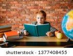 cute schoolgirl with textbooks... | Shutterstock . vector #1377408455