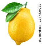 Small photo of Ripe lemon fruit with lemon leaf on white background. File contains clipping path.