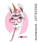 llama in a pink glasses  ice... | Shutterstock .eps vector #1377615332