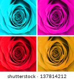 Collage Of Four Colorful Roses
