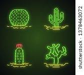 wild cacti in land neon light... | Shutterstock .eps vector #1378463072