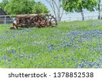 Old Tractor And Bluebonnet...