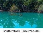 old broken tree branches fell... | Shutterstock . vector #1378966688