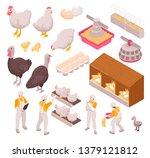 isometric chicken production... | Shutterstock .eps vector #1379121812