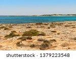 stony coast of the... | Shutterstock . vector #1379223548