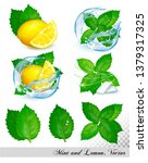collection of fresh mint and... | Shutterstock .eps vector #1379317325