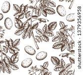 hand drawn potato background....   Shutterstock .eps vector #1379356958