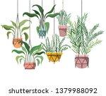 houseplants on macrame hangers... | Shutterstock .eps vector #1379988092