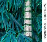 vegetation virgin of the... | Shutterstock . vector #1380643292