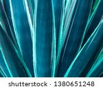vegetation virgin of the... | Shutterstock . vector #1380651248
